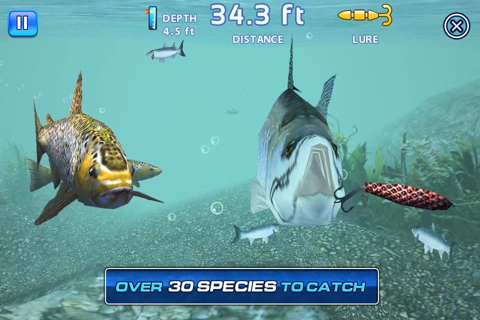 Play fishing kings free game online fishing kings free for Online fishing tournament